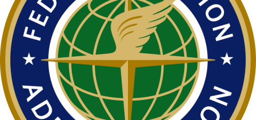Oficiální znak FAA, zdroj: Wikipedia Commons (public domain)